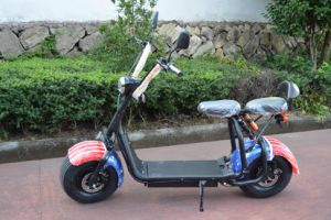 2016 Fashion off Road Citycoco Scooter with 60V/12ah Lithium pictures & photos