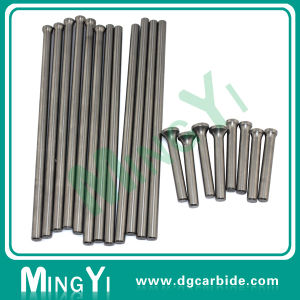 High Precision Champer Polished with Polished Degree Mold Pin pictures & photos