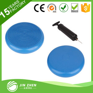 No2-2 Balance Cushion Frosted Balance Disc Balance Cushion with Pump pictures & photos