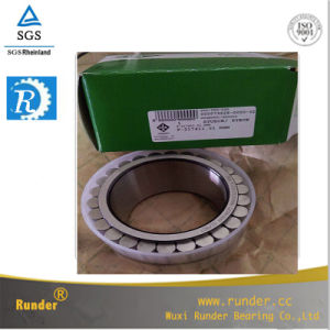 Mining Machinery Bearing and Engineering Construction Machinery SKF Excavator Bearing F-217411.1 pictures & photos