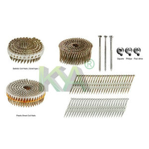 Hi-Load Smooth Coil Nails for Auto Nails Machine pictures & photos