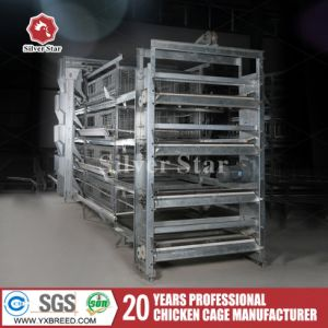 New H Type Stacked Poultry Farm Wire Netting Layer Cages for Sale pictures & photos