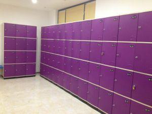 Width 380mm Locker Cabinet/Gym Locker/Locker Storage pictures & photos