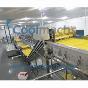 Frozen Fruits and Vegetable Processing Equipment Mango Production Line Freezing Mango Line pictures & photos