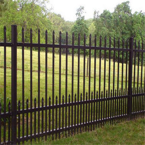 Ornamental Wrought Iron Fence From China