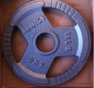 Commercial Use Olympic Cast Iron Plates pictures & photos