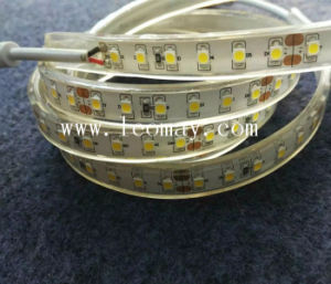 Hot Sale Waterproof SMD3528 LED Strip with CE pictures & photos