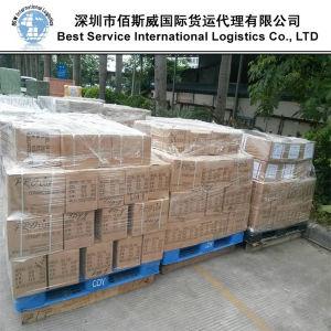 Logistics Loading & Trucking Service in Shunde, Dongguan, Zhongshan, Shenzhen, Foshan pictures & photos