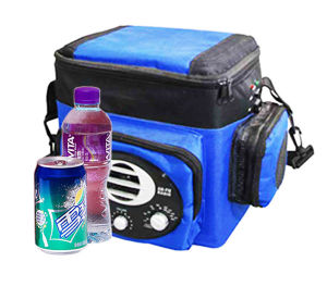 Portable Electronic Cooler 6liter DC12V with Radio for Cooling and Warming pictures & photos