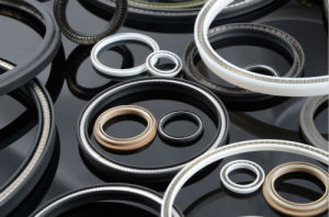 Plastic Seal/PTFE Seals with Resistance to Harsh Mediums for Sealing pictures & photos