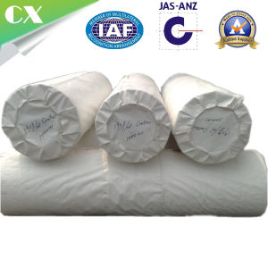 Polypropylene Pet PP Woven Geotextile pictures & photos