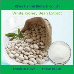 Manufactory Supply White Kidney Bean Extract pictures & photos