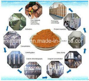 Fucoxanthin/Fucoxanthin 10%/Laminaria Japonica Aresch pictures & photos