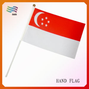 Singapore Outdoor National Flag (HYNF-AF088) pictures & photos