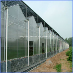 Production/Experiment /Commercial Large Small UV-Against 6mm Polycarbonate Twin-Wall Panel pictures & photos