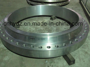Stainless Steel Multi-Sized Forged Flange