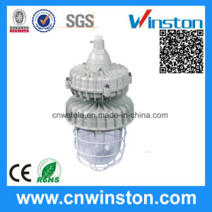 Explosion-Proof Lamp 85W Electrodeless Lamp Applicable to Storage (BAD62) pictures & photos