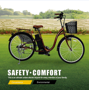 High Quality 24V 250W Electric Bicycle Pedal Assist pictures & photos