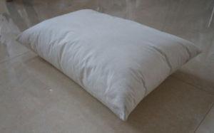 Evolon Pyhsics Anti-Mite Pillow pictures & photos