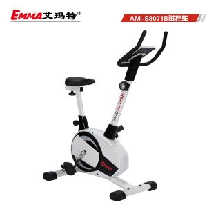 Hot Sale Indoor Magnetic Bike (8071B) pictures & photos