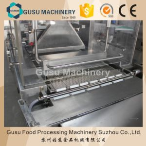SGS Hot Sale Snack Chocolate Enrobing Machine (TYJ600) pictures & photos