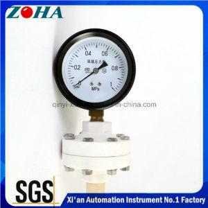 Diaphragm Seal Pressure Gauge pictures & photos