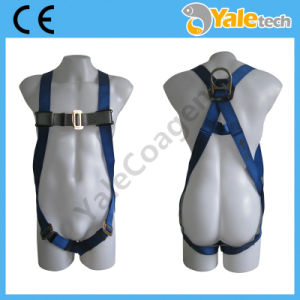 En361 Protection Safety Harness Yl-S316 pictures & photos