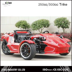 Racing Tricycle for Adult /Tricycles Bubble Trike 250cc EEC Approved pictures & photos