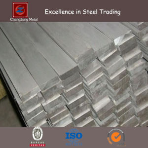 Stainless Steel Flat Bar with 6m Length (CZ-F66) pictures & photos
