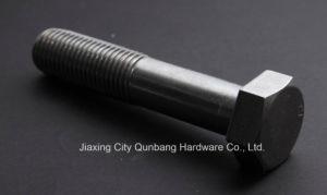 Hex Cap Screws (M5-M56 Cl. 4.8/6.8/8.8/10.9 ASME B18.2.3.1m) pictures & photos