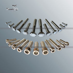 Cylindrical Head Hex Socket Stainless Steel Fastener & Screw (SS001)
