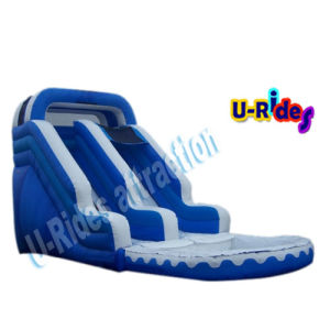 PVC Tarpaulin Water Slide pictures & photos