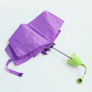 High Quality Eggplant Shaped Umbrella pictures & photos