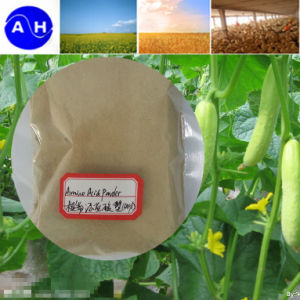 Low Price Amino Acids Plant Source Fertilizer pictures & photos