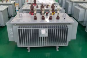 Distribution Power Amorphous Transformer S (B) H15 10kv pictures & photos
