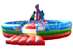 Commercial Grade Inflatable Gladiator Game CS004 pictures & photos