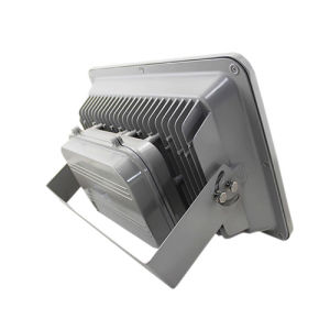 LED Flood Lamp/100W IP65 LED Flood Light pictures & photos