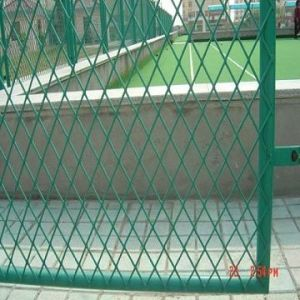China Supplier Expanded Metal Mesh Fence with High Quality pictures & photos