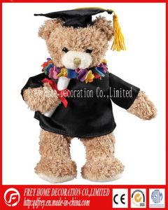 Plush Congratulation Teddy Bear for Graduation pictures & photos