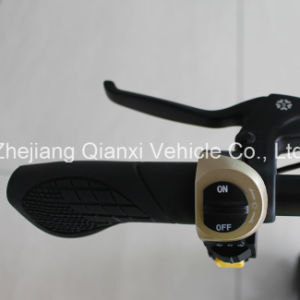 Aluminium Alloy Folding Electric Scooter pictures & photos