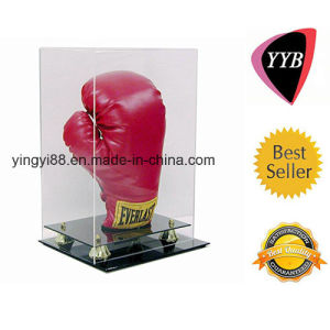 Hot Selling Acrylic Display Case with SGS Certificates pictures & photos