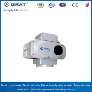 Grat Brand Series Compact Electric Actuator pictures & photos