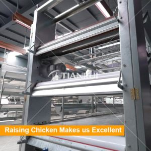 Tianrui Design Top Selling Chicken Layer Cage for Small Chicken pictures & photos