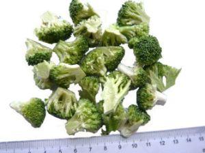 Freeze Dried Broccoli Floret pictures & photos