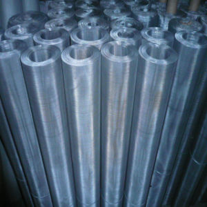 Stainless Steel Wire Mesh with Moderate Price pictures & photos