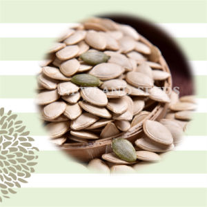 Agriculture Products Shine Skin Pumpkin Seeds
