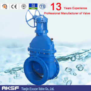 Non-Rising Stem Gate Valve with Rubber/EPDM Sealing (F4)
