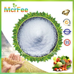 China Hot Sale 12-61-0 Monoammonium Phosphate for Agriculture/Industry Use pictures & photos
