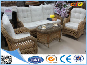 White and Brown Rattan Furniture Sofa pictures & photos