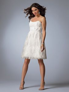 Popular Lace Cocktail Dress Gown (071)